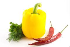 Paprika, pepper. Are isolated on a white background Royalty Free Stock Photo