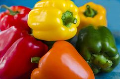Paprika pepper yellow orange red green close up on blue wooden background. Copy space close-up stock image