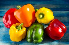 Paprika pepper yellow orange red green close up on blue wooden background. Copy space close-up royalty free stock images