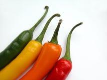 Paprika-Pfeffer Lizenzfreies Stockfoto