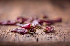 Paprika Pfeffer des roten Paprikas auf Holztisch Selektiver Fokus Stockbilder