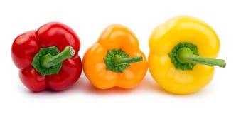 Paprika (Pfeffer) rot, Orange und Gelb Lizenzfreie Stockfotografie