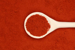 Paprika powder. A wooden spoon lies on paprika powder forming a background Royalty Free Stock Images