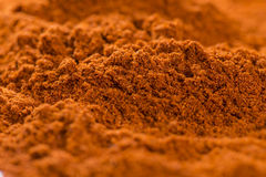 Paprika Powder (Macro Shot) Stock Image