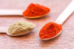 Paprika Powder / Red Chili Powder in the Spoon - Close Up Image Royalty Free Stock Photography