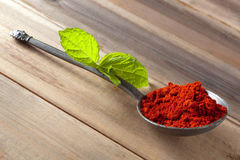 Paprika powder spice Royalty Free Stock Photos