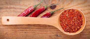 Paprika powder spices on spoons Stock Images