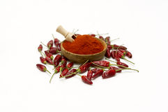 Paprika Powder In Wooden Bowl. Arkivbilder
