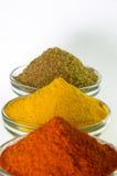 Paprika-Pulver-, Gelbwurz-Pulver- u. Korianderpulver in der Schüssel Lizenzfreies Stockbild