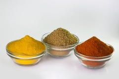 Paprika-Pulver-, Gelbwurz-Pulver- u. Korianderpulver in der Schüssel Stockbilder