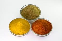 Paprika-Pulver-, Gelbwurz-Pulver- u. Korianderpulver in der Schüssel Lizenzfreies Stockfoto