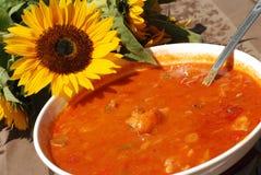 A paprika quente baseou o guisado de peixes Fotografia de Stock