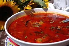 A paprika quente baseou a sopa dos peixes Foto de Stock