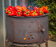 Paprika. Roasting red paprika on range for winter provisions , autumn season Royalty Free Stock Photography