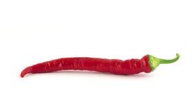Paprika roja de los chiles Foto de archivo libre de regalías