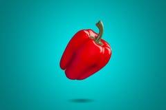 Paprika rojo en fondo azul Colorfull Imagenes de archivo