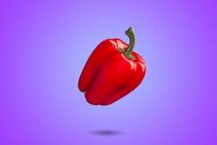 Paprika rojo en la pendiente violeta de la pizca del fondo Imagen de archivo libre de regalías