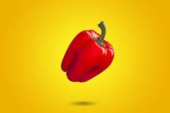 Paprika rojo en pendiente amarilla de la pizca del fondo Fotografía de archivo