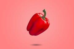 Paprika rojo en pendiente roja de la pizca del fondo Foto de archivo libre de regalías