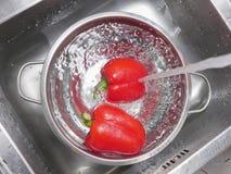 Paprika rojo que se lava Foto de archivo libre de regalías