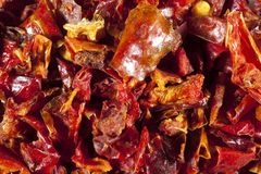 Paprika rouge Image stock