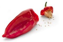 Paprika rouge Photo libre de droits