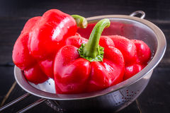 Paprika Rouge photographie stock