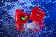 Paprika rouge dans l'eau Images libres de droits