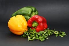 Paprika's met peterselie op een zwarte achtergrond Stock Afbeeldingen