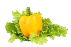 Paprika with salad Royalty Free Stock Photo