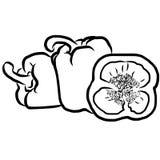 Paprika Sketch Vegetables Image libre de droits