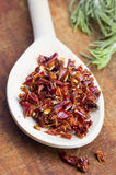 Paprika spice in spoon Royalty Free Stock Photos