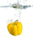 Paprika with splash Royalty Free Stock Images