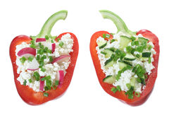 Paprika stuffed cottage cheese with cucumber and radish Stock Images