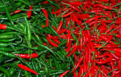 Paprika tailandesa roja Foto de archivo
