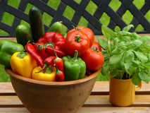 Paprika & tomatoes. Fresh vegetables Royalty Free Stock Photography