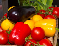 Paprika tomatoes aubergines Royalty Free Stock Photography