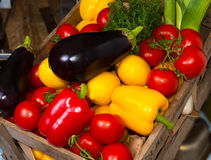 Paprika tomatoes aubergines Stock Image