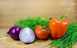 Vegetables on green fennel. Paprika, tomatoes and onion with herbs on wood background stock photography