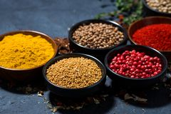 Paprika, turmeric, red pepper and other fragrant spices. On dark background, closeup, horizontal royalty free stock image