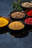 Paprika, turmeric, red pepper and other fragrant spices. On dark background, vertical, closeup stock photo