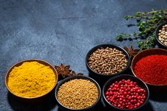 Paprika, turmeric, red pepper and other fragrant spices. Horizontal royalty free stock image