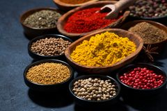 Paprika, turmeric, red pepper and other oriental spices. Horizontal royalty free stock images