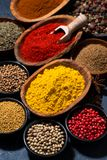 Paprika, turmeric, red pepper and other oriental spices. Vertical, top view stock photography