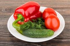 Paprika und Tomaten, Gurken, Dill in der Platte Lizenzfreie Stockfotografie
