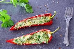 Paprika vermelha cozinhada forno enchida com queijo, alho e ervas em um fundo cinzento abstrato Conceito saudável comer Fotografia de Stock Royalty Free