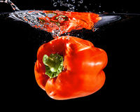 Paprika water Royalty Free Stock Image