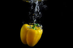 Paprika in water Stock Photography