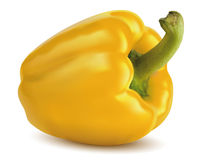 Paprika yellow . Vector illustration Stock Image