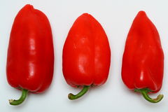 paprikaes rouges photos stock